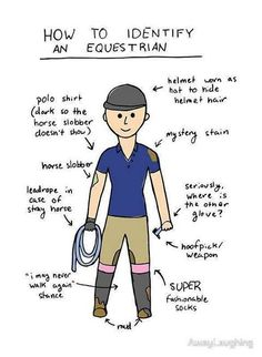 How to identify an equestrian