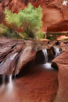 This is Coyote Falls in Utah! It would be a really cool place to visit if you're ever around.