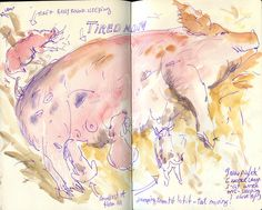 Hidden Villa - New Piglets Originally uploaded by apple-pine New piglets in Hidden Villa. Piglets, Nature Journal, Watercolor Tattoo, Journaling, Pine, Villa, Pine Tree, Caro Diario, Baby Pigs
