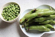 Shoudoshima Beans