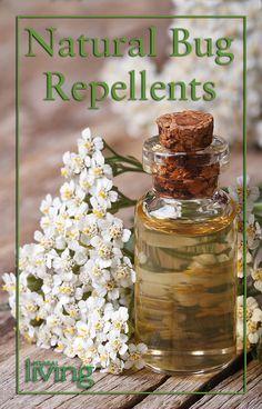 Natural-Bug-Repellents