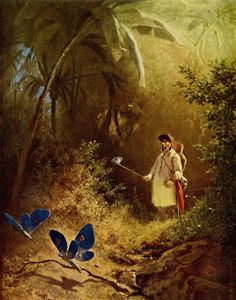 The artwork fine art print and hand painted oil reproduction of the painting The Butterfly Hunter, oil painting of Carl Spitzweg we deliver as art print on canvas, poster, plate or finest hand made paper. Carl Spitzweg, Art Database, True Art, Art Pages, Famous Artists, Art Reproductions, Art History, Painting & Drawing, Painting Art