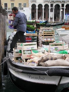 Fisherman unloading for the market in Vience Italy