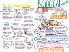 A nice note page on biomolecules/macromolecules/organic compounds.
