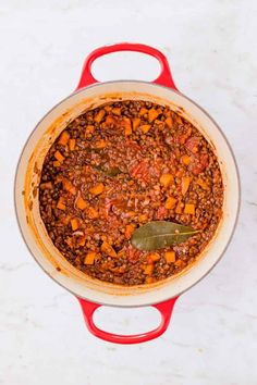 The best vegan lentil Bolognese recipe ever! Aromatic, delicious, and loaded with nutrients - this vegan Bolognese sauce is a favorite family meal! Spaghetti Bolognese, Bolognese Sauce, Lentil Bolognese Vegan, Sauce Recipes, Cooking Recipes, French Green Lentils, Vegan Parmesan Cheese, Pasta, Italian Dishes