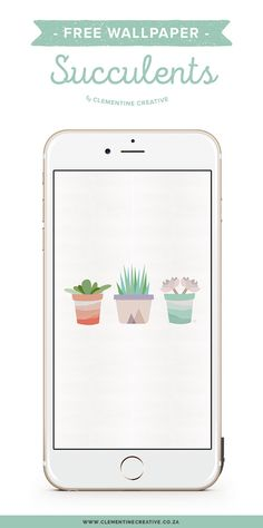 Download this cute free succulent wallpaper for your phone, tablet or desktop!