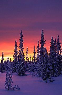 Vuotso in Lapland, Finland. Polar glow by Antti-Jussi Liikala, via Flickr
