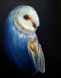 Barn Owl Giclee Print - Contentment in Color Owl - Colored Pencil Painting Reproduction - Bird Art - Nature Drawing - Wildlife Prints - Owls by KStropeDesign on Etsy https://www.etsy.com/listing/457349914/barn-owl-giclee-print-contentment-in