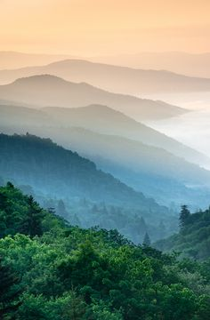 """""""Ankles deep in coastal sand; high atop Appalachian peaks; seeking the unusual, and sharing with you! Outdoor Freelance Photographer."""" ~ MARK VAN DYKE"""