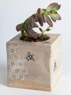 Plantador de hormigón-abejas y panal regalo de boda regalo