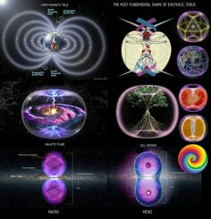 Toroidal forces are nature.