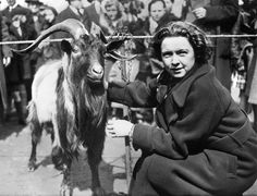 Pretzels the goat and his mistress, Vivian Libby, basked in victory's glow in Central Park in 1934 after Pretzels won a brewery-sponsored beauty contest. #goatvet  says a fine specimen