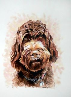 """Bespoke Commission Pet Portrait Drawn in Pen and Ink From Customers Own Photograph 16""""x 12"""" (406mm x 305mm) Dog Cat Rabbit Horse Hamster - pinned by pin4etsy.com"""