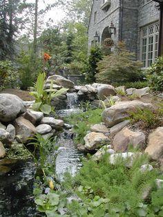 Backyard Pond / Stream