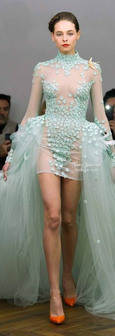 Tony Yaacoub Spring 2014 Couture