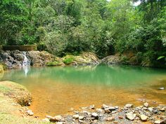 Patillas,+Puerto+Rico | Charco Azul, Patillas, Puerto Rico, Bosque Carite. | Flickr - Photo ...
