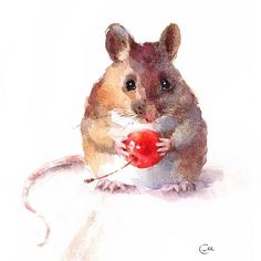 Mouse eating healthy