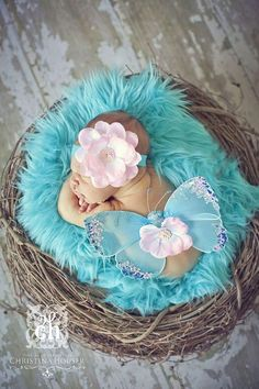 SET Aqua Fur and Wood Branch Nest Owl Bird Photography Prop Newborn Baby