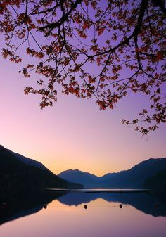 ....dawn