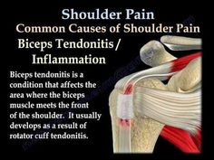 Shoulder Pain - Everything You Need To Know - Dr. Nabil Ebraheim
