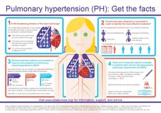 Pulmonary Hypertension facts from PHA Europe Nursing Student Tips, Nursing School Notes, Icu Nursing, Nursing Students, Np School, Pulmonary Hypertension, Heart And Lungs, Cardiology, Scholarships For College
