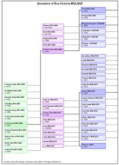 Legacy Family Tree Genealogy Software....Descendant Right to Left Chart with siblings.