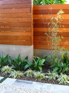 beautiful fence and plantings