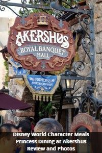 Disney World Character Meals -| Princess Dining at Akershus - Review and photos from yourfirstvisit.net | #DisneyWorldRestaurants #DisneyWorldCharacterMeals #DisneyWorldTips Disney World Deals, Disney World Food, Disney World Planning, Walt Disney World Vacations, Best Disney Restaurants, Disney World Characters, Holidays Around The World, Disney World Tips And Tricks