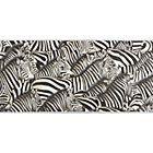 zebras painting.
