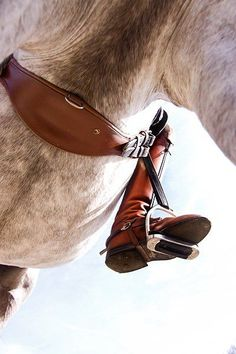The most important role of equestrian clothing is for security Although horses can be trained they can be unforeseeable when provoked. Riders are susceptible while riding and handling horses, espec… Equestrian Outfits, Equestrian Style, Equestrian Fashion, Horse Photos, Horse Pictures, All The Pretty Horses, Beautiful Horses, Horse Love, Horse Girl