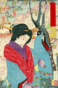 Yoshitoshi - Tokyo boast twelve months March Yoshihara of cherry Bishu Lou Nagao