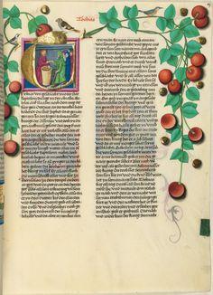 La Biblia de Furtmeyr — Visor — Biblioteca Digital Mundial