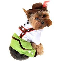 Alpine Boy Dog Costume. hahaha! What a  sweet little man.