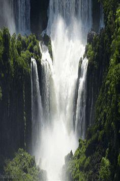 Simply sublime Iguazu waterfall #gif  and insightful #blogpost