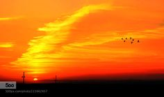 Sunset by CharuhasImages. Please Like http://fb.me/go4photos and Follow @go4fotos Thank You. :-)