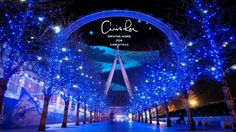 Christmas lights around the globe – Top Of The World Christmas In England, London Christmas, Best Christmas Lights, Christmas Fun, Christmas Decorations, Xmas, Holiday Photos, Christmas Pictures, Places Around The World