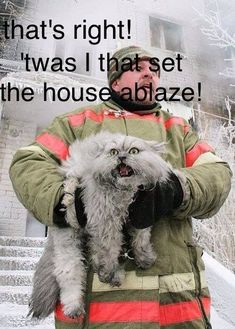 Top 35 Funniest Quotes #Humor . . . This page has many humorous captioned images on it, but this one, lots of images down the page, made me laugh so hard I cried. :-D