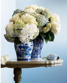 hydrangea in blue and white vases