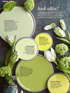Love the paint colors you saw in the Better Homes and Gardens color story? Get the paint color names, plus tips and tricks for decorating with color.