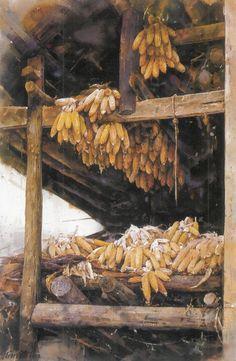 Corn Cob Web.