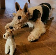 WoolyPaws needle felted dogs