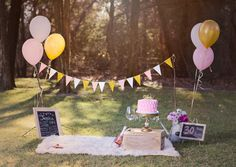 Like the bunting sticks Picnic Birthday, Birthday Cake Smash, 40th Birthday, Birthday Parties, 1st Birthday Photoshoot, First Birthday Photos, Birthday Pictures, Picnic Decorations, Birthday Decorations