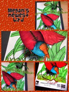 Megan's newest bird