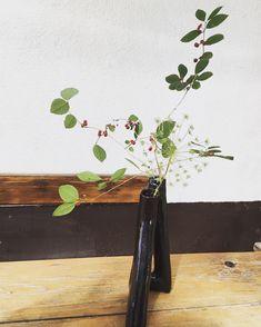 Blog – Zenshin Ikebana Ikebana, Flower Arrangements, Flora, School, Floral Arrangements, Plants