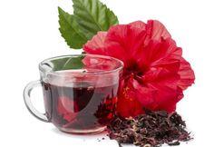 Chá de hibisco: a bebida que combate a gordura da barriga e quadris | Minha Vida