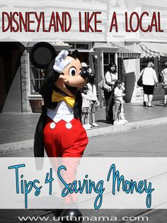 Amazing Tips for Visiting Disneyland and Disney World on a Budget. From a mom who has been hundreds of times - going to use this to plan my trip!