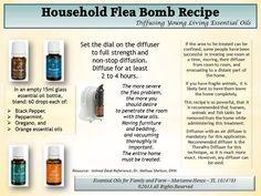 Young Living Black Pepper, Peppermint, Oregano & Orange Essential Oils: Flea…