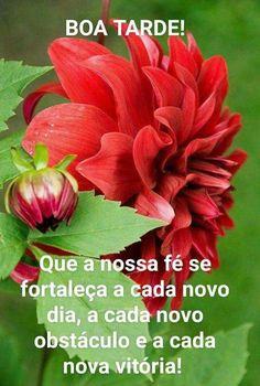 Good Afternoon, Nova, Marines, Facebook, Good Evening Messages, Cafe De Flore, Beautiful Flowers, Photo Galleries, Be Nice