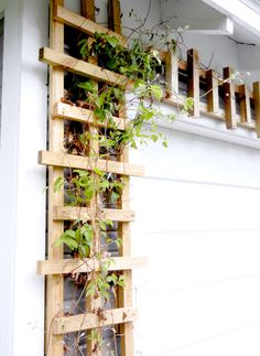 Build your own trellis | From Especially Creative Broad