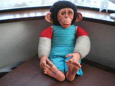 Jacko the Monkey - how...